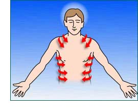 Outline of man showing nerve channels flow from back to sides of body
